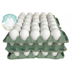 Cartòn de Huevo