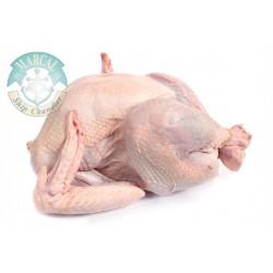 Natural Turkey