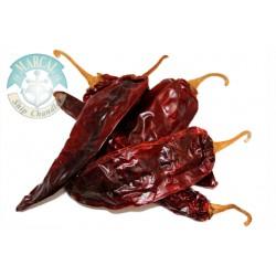 Guajillo chile