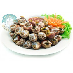 Cooked Chinese Snail